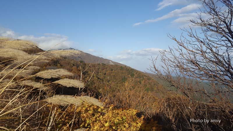佐渡 紅葉の景色